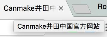 """问题10(示例):它不是官方网站,但标题中包含诸如""""官方网站""""之类的词,以误导搜索用户"""
